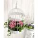 Cage à Oiseaux - Location sur Lyon sa région