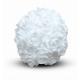 Location de Boule de Roses Blanches - Diam 30 cm